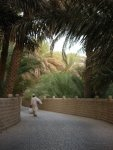 Al Ain is known for its Oasis